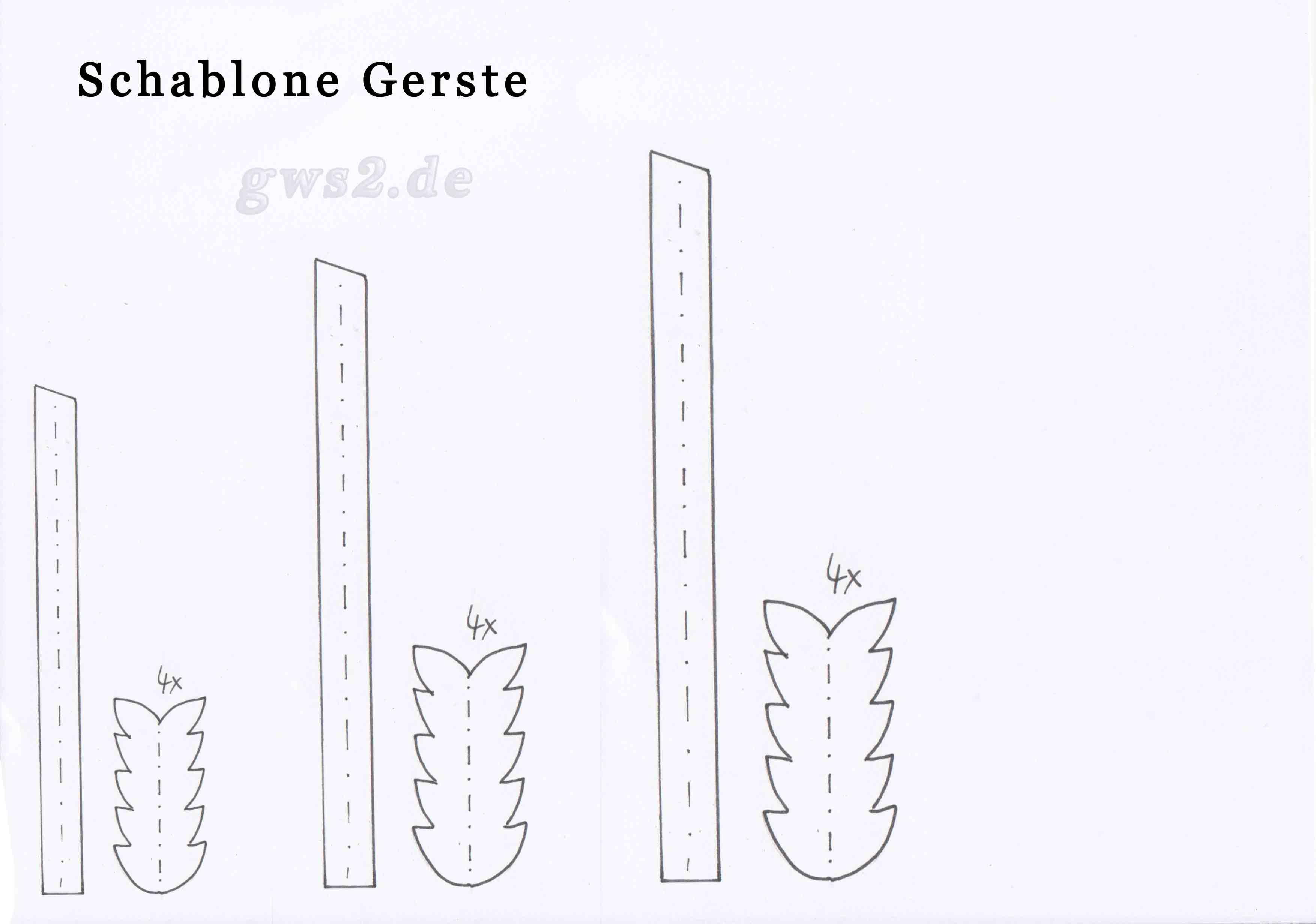 Bild von Schablone für Gerste