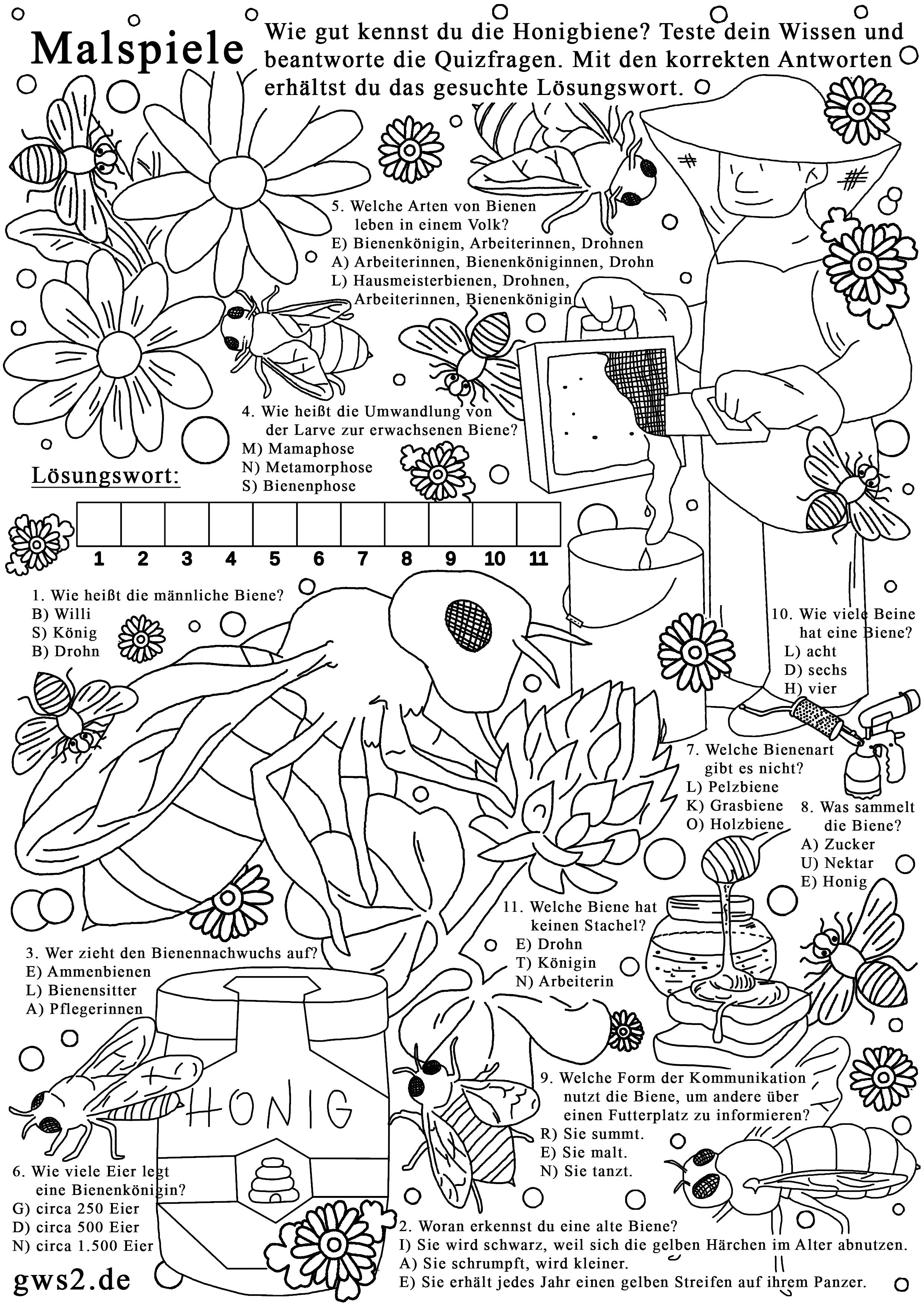 Bienen zum Ausmalen - Rätselspiele für Kinder