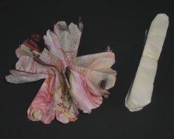 Bild wie eine Serviettenblume entsteht