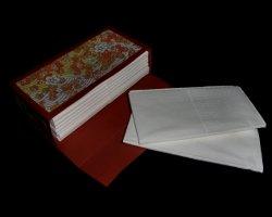 Taschentuchtasche aus Papier