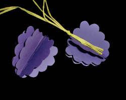 Bild von Naturbast und Weintraube